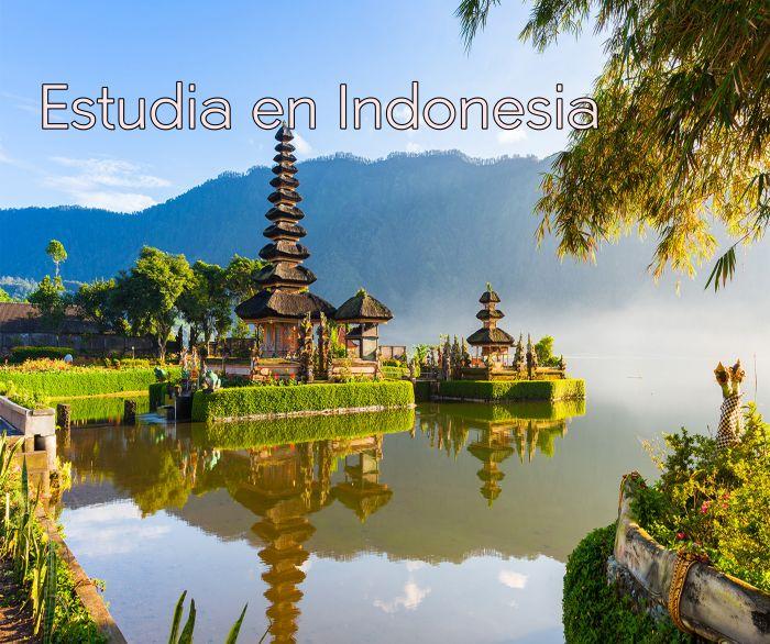 Indonesia: Beca Pregrado en Diversas Áreas Universidad Islámica