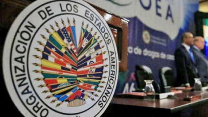 Becas OEA Informa