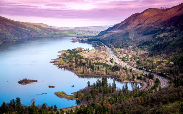 Estados Unidos: Beca Pregrado en Diversas Áreas  University of Oregon