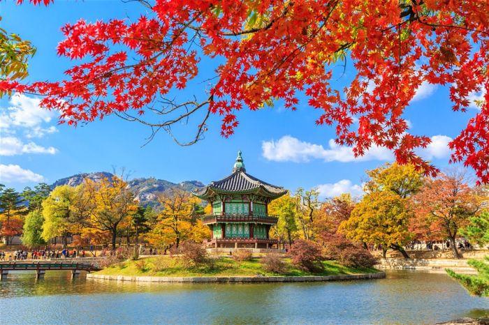 Corea: Beca Doctorado en Diversas Áreas Universidad de Seúl