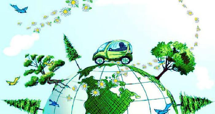 Online: Beca Maestría en Turismo Sostenible OEA/Fondo Verde