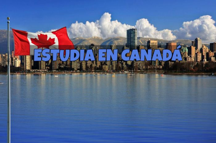 Canadá: Beca Pregrado Diversas Áreas Universidad Mount Allison