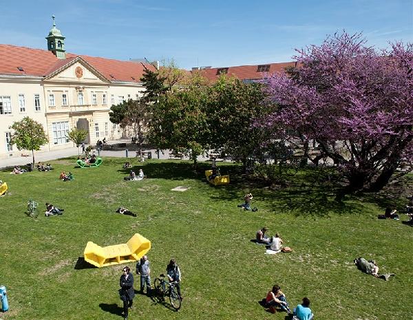 Austria: Becas para Doctorado en Física Universidad Viena
