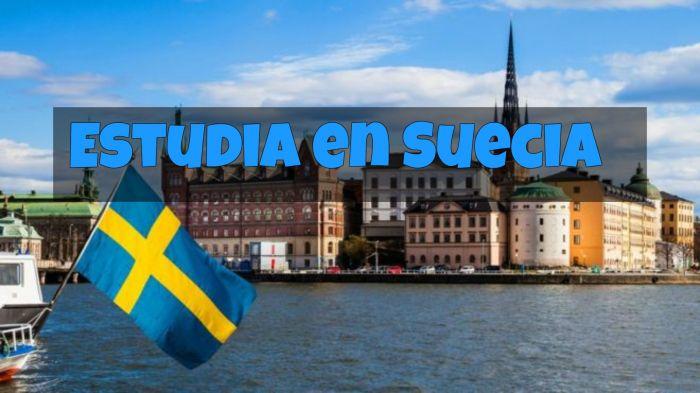 Suecia: Beca Pregrado Diversas Áreas Universidad de Karlstad