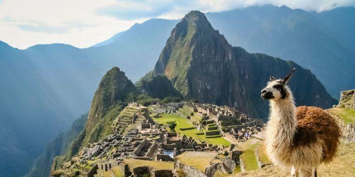 Perú: Beca Técnico y Pregrado en Diversas Áreas PRONABEC