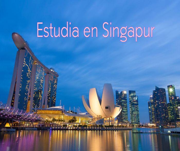Singapur: Beca Maestría en Ciencias Integrales e Ingeniería Universidad Nacional de Singapur