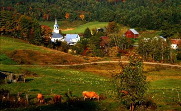 Estados Unidos: Beca Maestría en Innovación Sostenible Universidad de Vermont