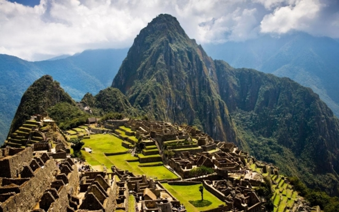 Online: Beca Diplomado en Biodiversidad y Conservación del Medio Natural OEA  Fondo Verde