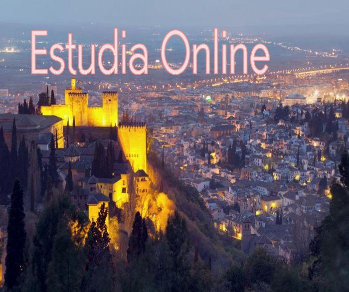 Online: Beca Diplomado  en Dirección y Gestión de Empresas  OEA  EADIC