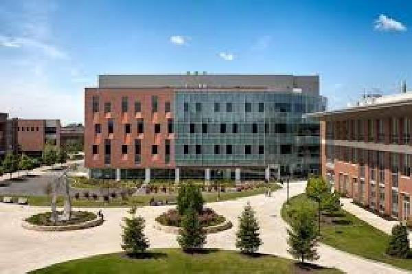 Online: Becas Maestría Diversos Temas Instituto de Tecnología de Rochester/OEA