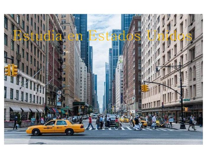 Estados Unidos: Beca Pregrado en Derecho  Ankin