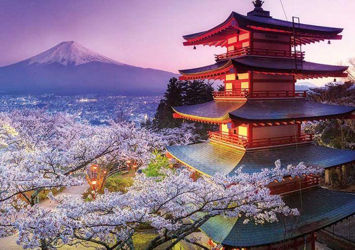 Japón: Beca Postdoctorado en Diversas Áreas Instituto Kavli