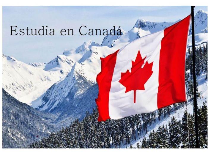 Canadá: Beca Maestría en Diversas Áreas Universidad de Dalhousie