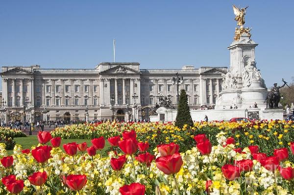 Reino Unido: Becas para Postgrado en Varios Temas University of Buckingham