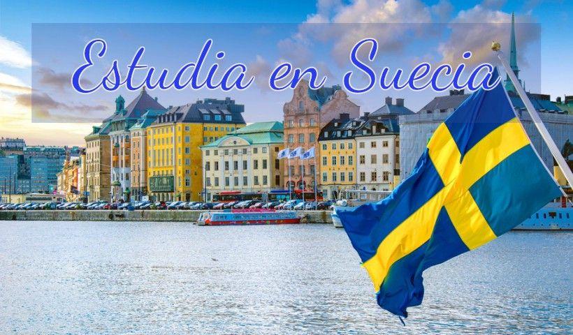 Suecia: Beca Maestría Diversas Áreas Linnaeus University