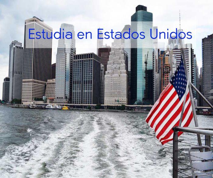 Online: Beca Curso en  Educación Especial SG / OEA TESOL