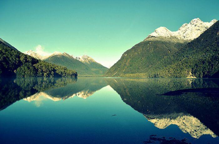 Nueva Zelanda: Beca Maestría en Diversas Áreas Universidad de Otago