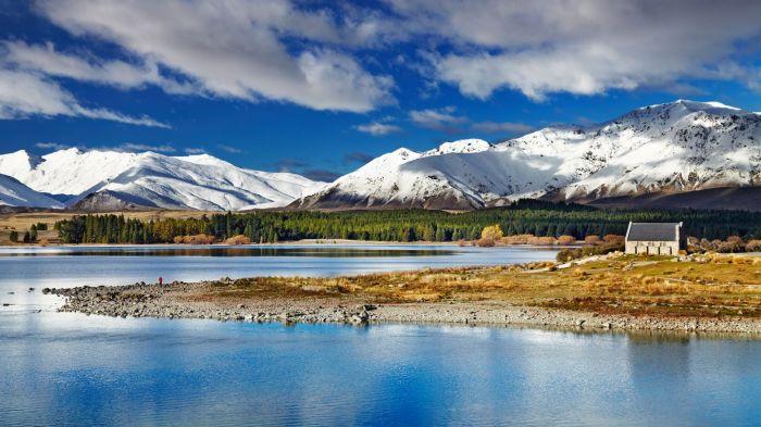 Nueva Zelanda: Beca Pregrado en Diversas Áreas Universidad de Otago