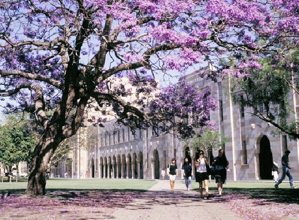 Australia: Becas para Pregrado en Ciencias University of Queensland