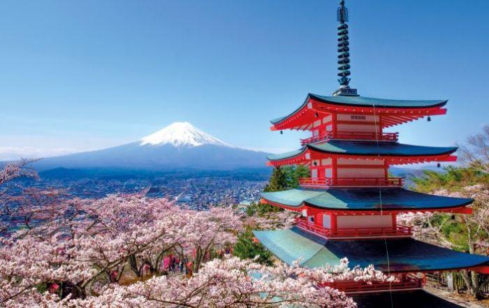 Japón: Beca Pregrado y Postgrado  en Diversas Áreas Sophia University