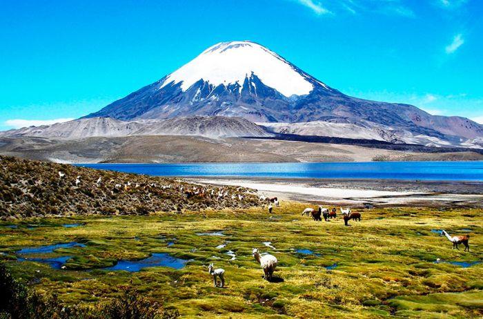 Chile: Beca Pregrado en Diversas Áreas Agencia Chilena de Cooperación Internacional para el Desarrollo