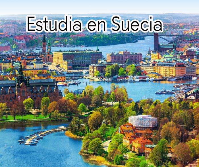 Suecia: Beca Pregrado en Diversas Áreas  Expertvalet