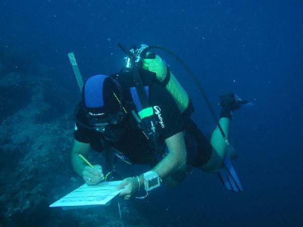España: Becas para Maestría en Biología Marina Universidad de La Laguna