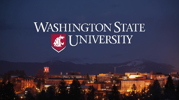Estados Unidos: Becas para Pregrado en Varios Temas Washington State University