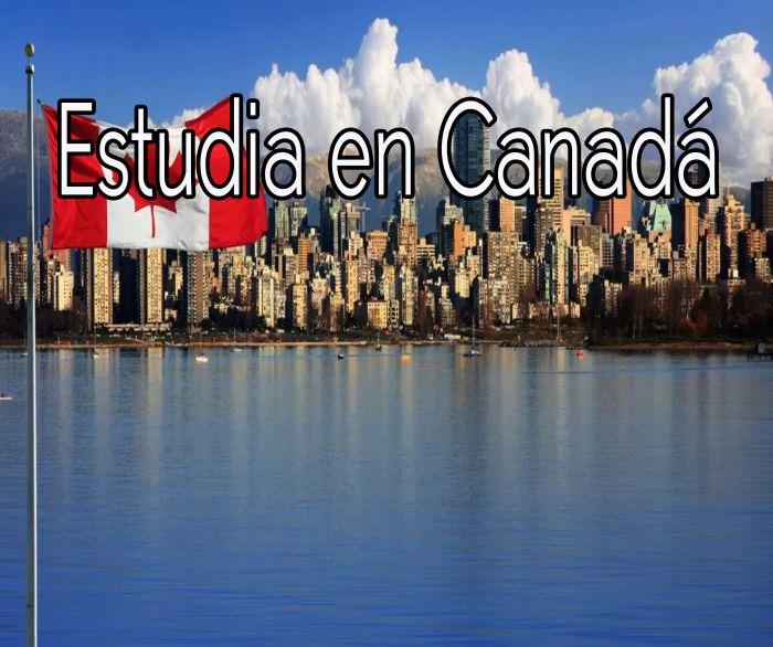 Canadá: Beca Pregrado en Diversas Áreas Universidad de St. Thomas