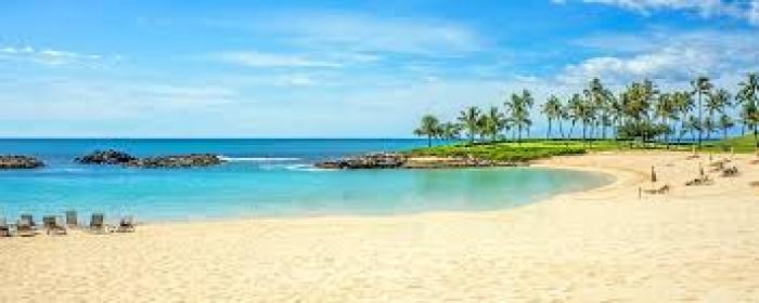 Estados Unidos: Beca Pregrado en Diversas Áreas  Universidad  Hawai