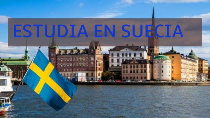 Suecia: Beca Maestría Salud Pública Universidad de Umea