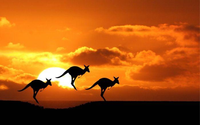 Australia: Beca Maestría en Filosofía Universidad Nacional de Australia