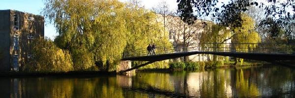 Reino Unido: Becas para Maestría en Política y Trabajo Social  University of York