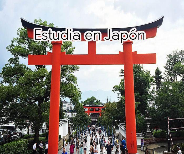 Japón: Beca Maestría y Doctorado en Ciencias  Universidad de Tokio