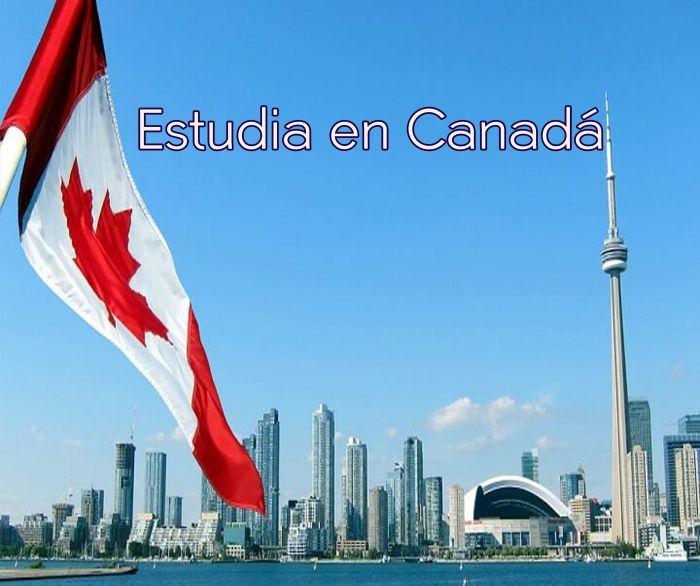 Canadá: Beca Pregrado y Maestría en Diversas Áreas Universidad Wilfrid Laurier