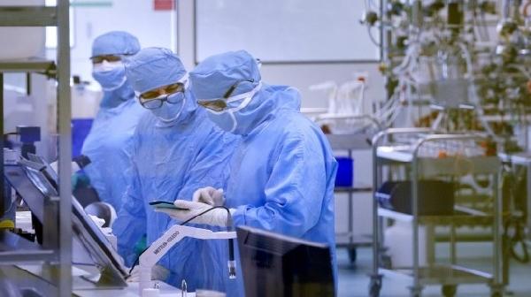 Becas de Investigación para Doctorado en Ciencias Instituto Pasteur