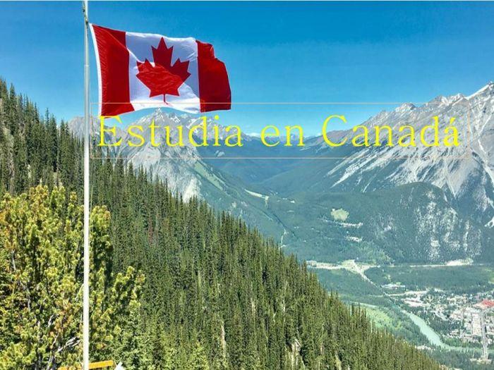 Canadá: Beca Pregrado en Diversas Áreas St. Thomas University