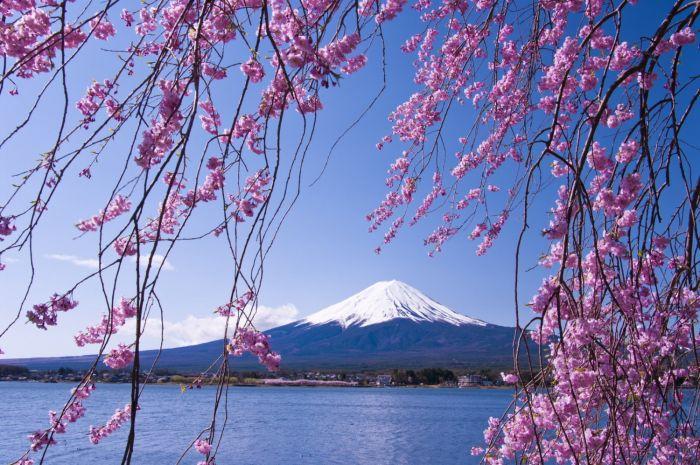 Japón: Beca Doctorado  en Ciencias de la Sostenibilidad Universidad de las Naciones Unidas