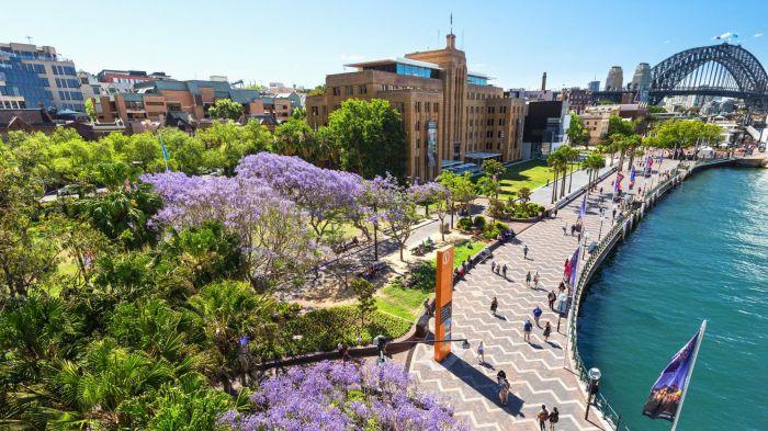 Australia: Beca Pregrado y Maestría en Diversas Áreas Southern Cross University