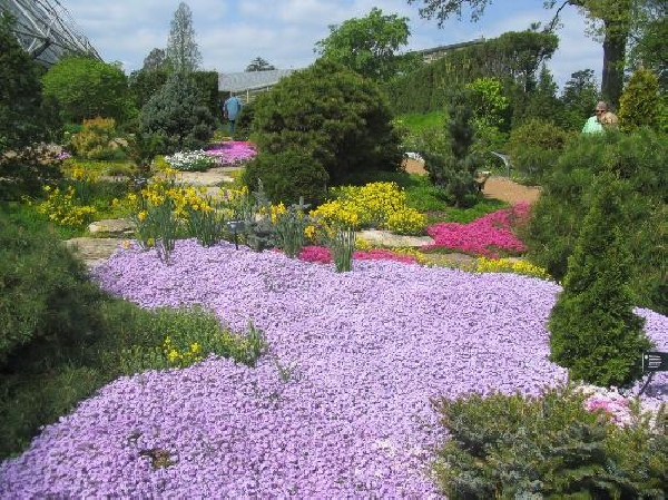 Estados Unidos: Becas de Investigación para Biogeografía y Botánica The Missouri Botanical Garden (MBG)