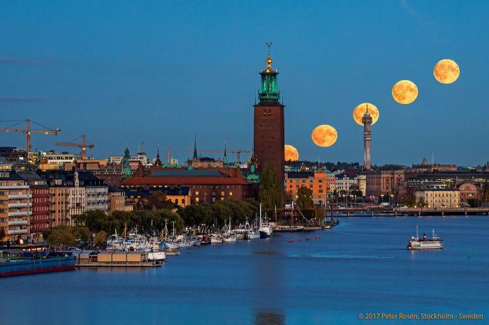 Suecia: Beca Maestría en Diversas Áreas  Instituto Karolinska