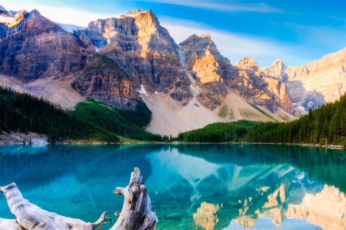 Canadá: Beca Pregrado Diversas Áreas  Universidad  Carleton