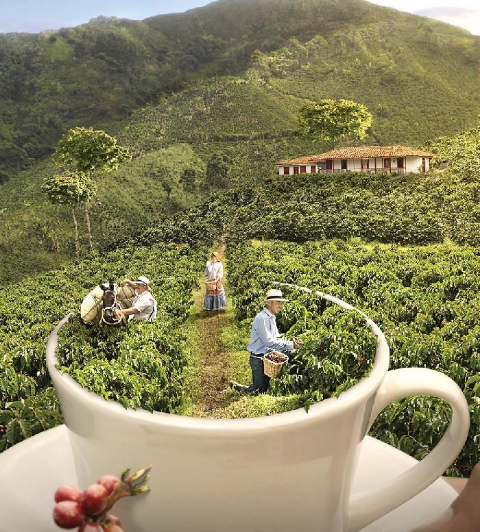 Online: Beca Curso Patrimonio Cultural, Turismo y Paisaje OEA/Fondo Verde
