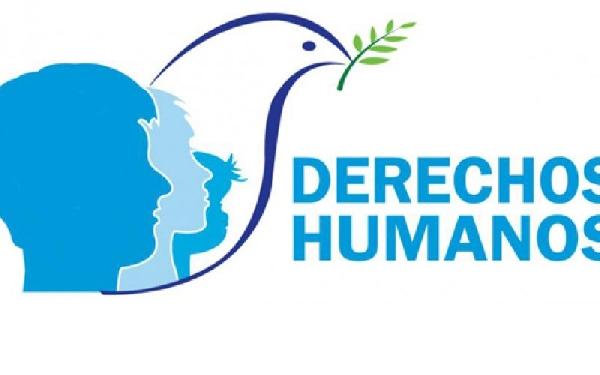 Online: Beca Diplomado Experto Universitario en Derechos Humanos OEA UNED