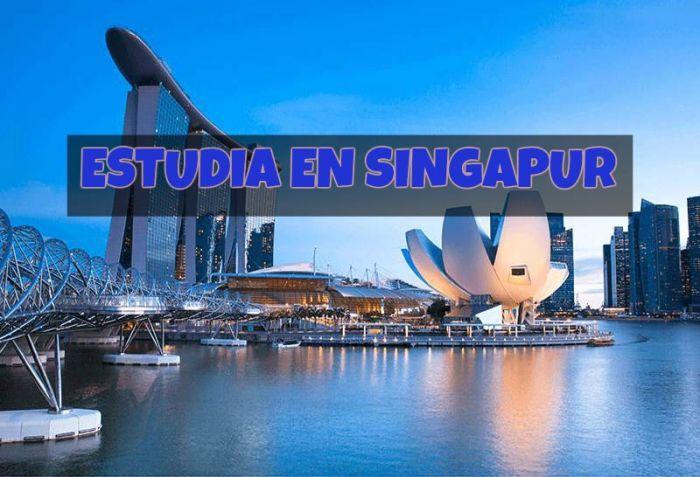 Singapur: Beca Pregrado Ciencias Ingeniería Universidad Técnica de Nanyang