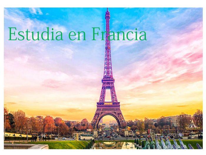 Online: Beca Maestría en Diversas Áreas  Instituto Francés de América Central
