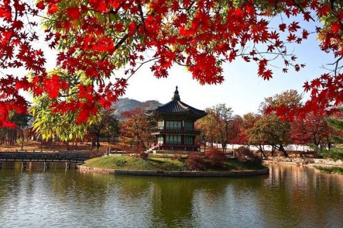 Corea del Sur: Beca Doctorado en  Ingeniería Información y Comunicación Universidad   Chosun