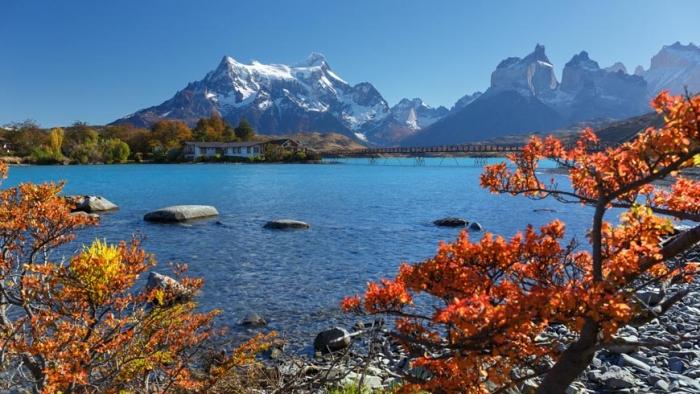 Chile: Beca Maestría en Ciencias Políticas y Comunicacionales  CONICYT  OEA