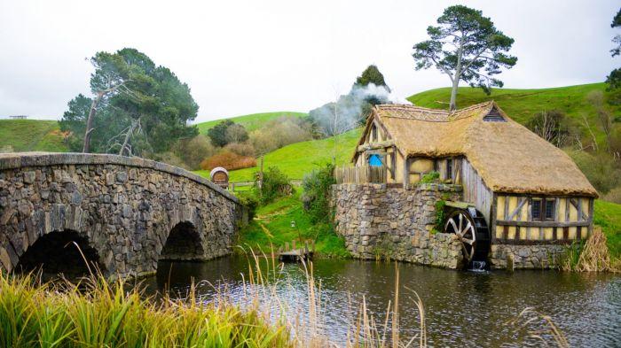 Nueva Zelanda: Beca Pregrado en Artes Contemporáneas Universidad de Massey