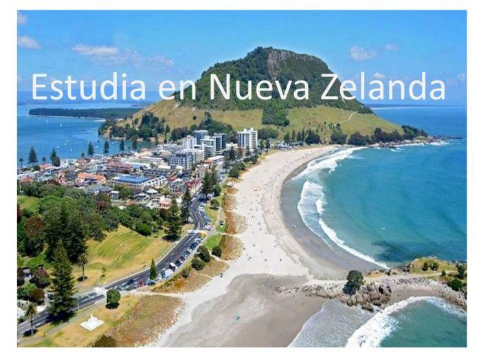 Nueva Zelanda: Beca Pregrado y Maestría en Diversas Áreas Universidad  Waikato